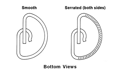smooth and serrated bottom views